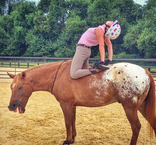 camel on horseback